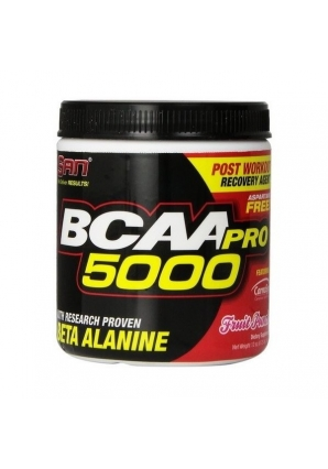 BCAA-Pro 5000 340 гр. aspartame free (SAN)