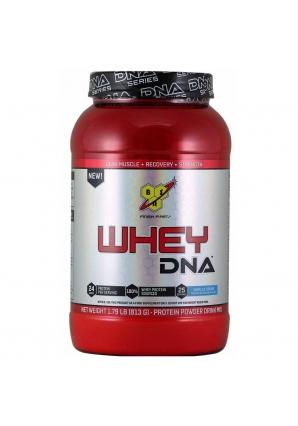 Whey DNA 813 гр 1.79 lb (BSN)