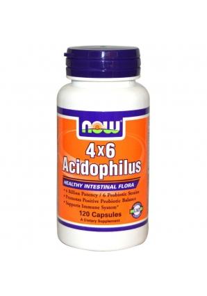 4x6 Acidophilus 120 капс (NOW)