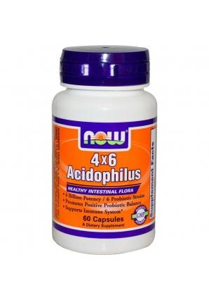4x6 Acidophilus 60 капс (NOW)