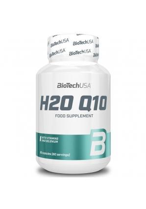 H2O Q10 60 капс (BioTechUSA)