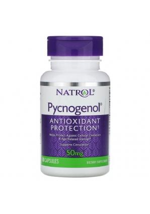 Pycnogenol 50 мг 60 капс (Natrol)