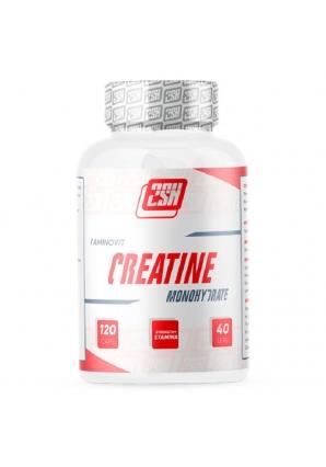 Creatine 750 мг 120 капс (2SN)