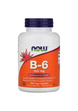 B-6 100 мг 250 капс (NOW)