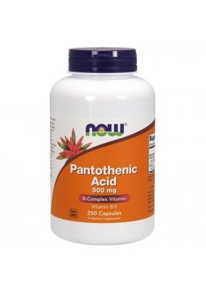 Pantothenic Acid 500 мг 250 капс (NOW)