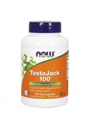 Testo Jack 100 - 120 капс (NOW)