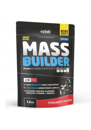 Mass Builder 1200 гр (VPLab)