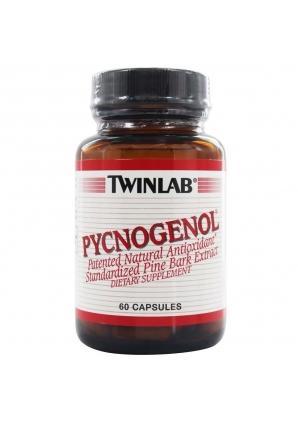 Pycnogenol 50 мг 60 капс (Twinlab)