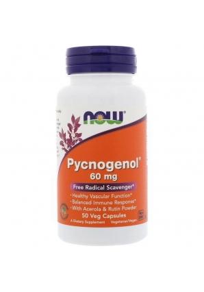 Pycnogenol 60 мг 50 капс (NOW)