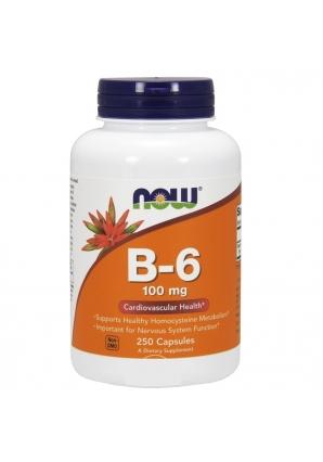 B-6 100 мг. 250 капс (NOW)