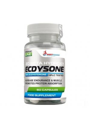 Ecdysone 100 мг 60 капс (WestPharm)